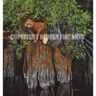 "Fox On The Rocks – ""Gunflint"" series"