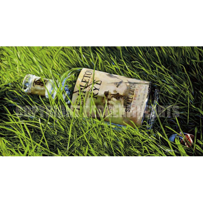 Templeton Rye in Grass After the Reunion